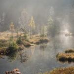 nationalpark_ellbachsee